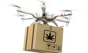 Drona dostarczała cannabis i haszysz do berlińskiego więzienia, UltimateSeeds.pl