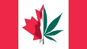 Legalizacja w Kanadzie i ograniczenia, UltimateSeeds.pl