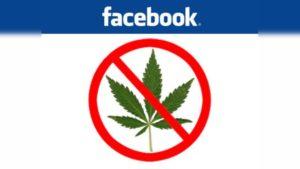 Facebook odblokowuje cannabis, UltimateSeeds.pl