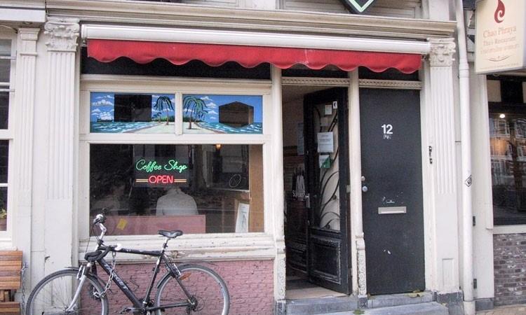 Holenderskie Coffeshopy   Najpopularniejsze i Najsilniejsze Odmiany, UltimateSeeds.pl