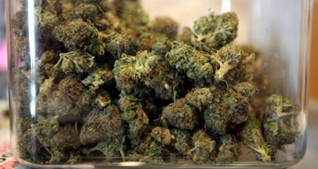 Pacjenci Na Sycylii Bezpłatnie Otrzymują Medyczną Marihuanę, UltimateSeeds.pl
